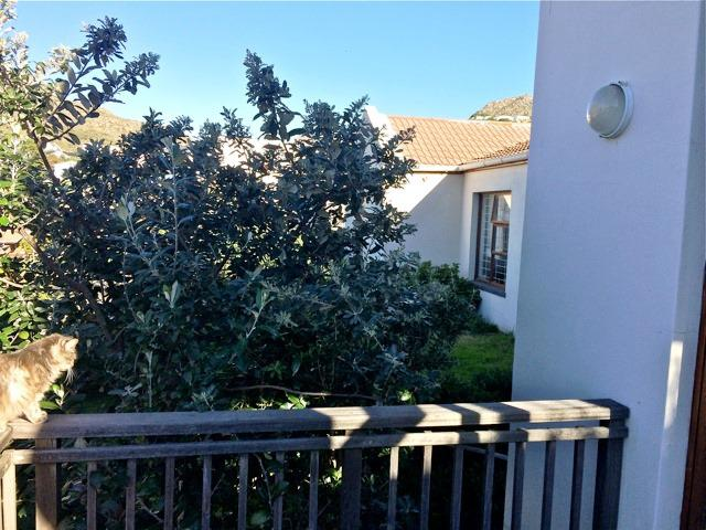 Property For Sale in Hout Bay, Cape Town 35