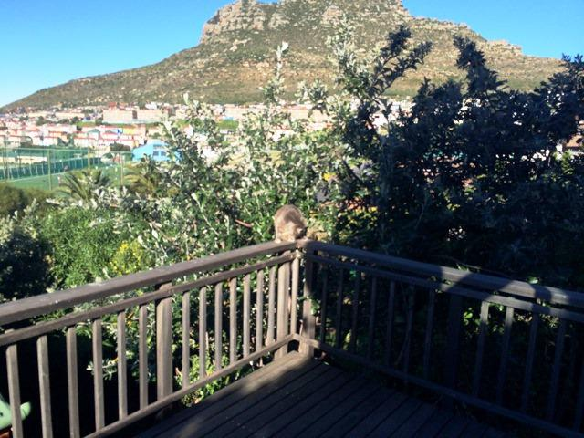 Property For Sale in Hout Bay, Cape Town 36
