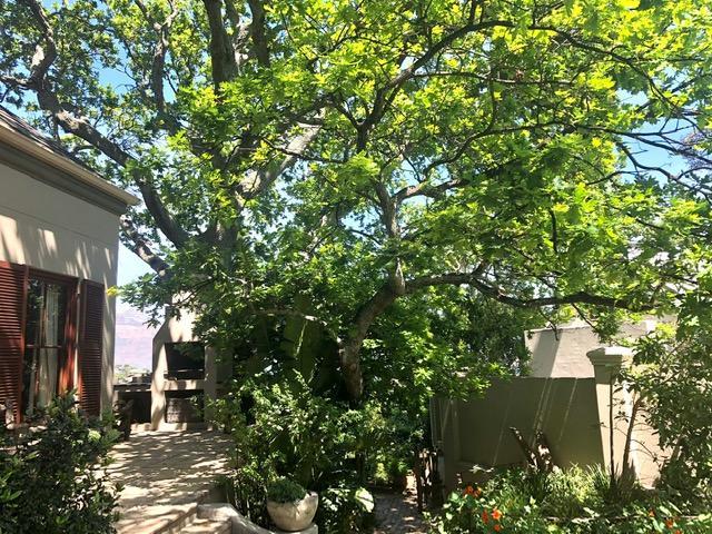 Property For Sale in Scott Estate, Hout Bay 47