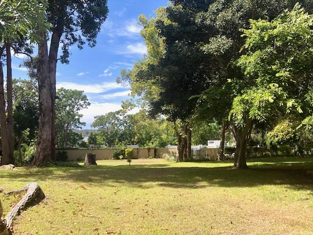 Property For Rent in Constantia, Cape Town 3