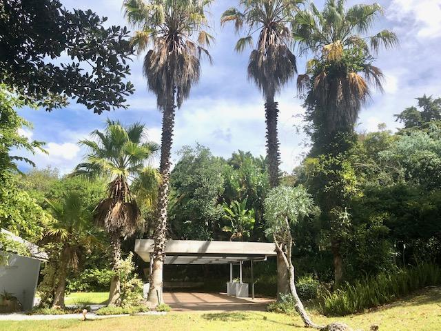 Property For Rent in Constantia, Cape Town 5